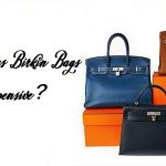 Why Hermes Birkin Bags Are So Expensive? Does Birkin Bags Worth Your Money?