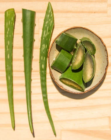 Aloe Vera For Skin And Hair