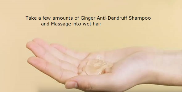 Ginger Anti-Dandruff Shampoo Review