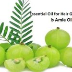 How To Use Amla Oil for Hair – Essential Oils for Hair Growth, Thickness & Health